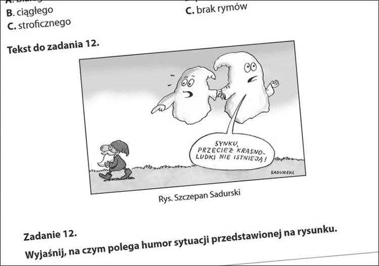 edukacja język polski szkolnictwo